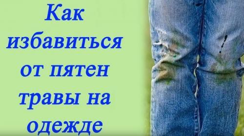 Как отстирать пятна от травы на джинсах. Чем отстирать траву с джинсов и одежды из других тканей