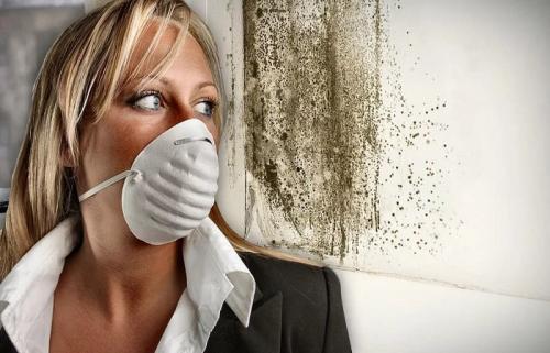 Как избавиться от запаха сырости в частном доме. Как избавиться от запаха сырости в доме или квартире: полезные советы