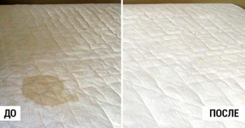 Как вывести запах мочи из матраса в домашних условиях. Особенности чистки в зависимости от типа матраса и возраста загрязнения