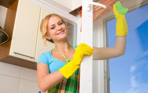 Лучшее средство для мытья окон без разводов в домашних условиях. Основные правила мытья окон