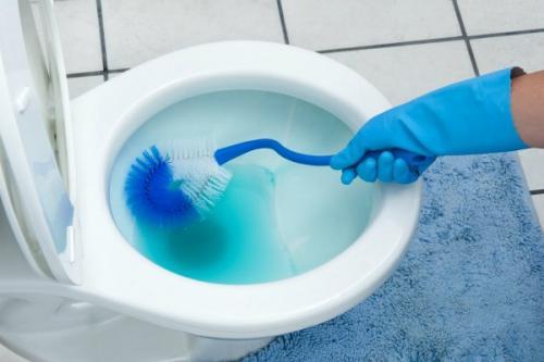 Как мыть туалет доместосом. Как в домашних условиях за копейки почистить унитаз — все просто